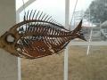 Een gelaserde vis.
